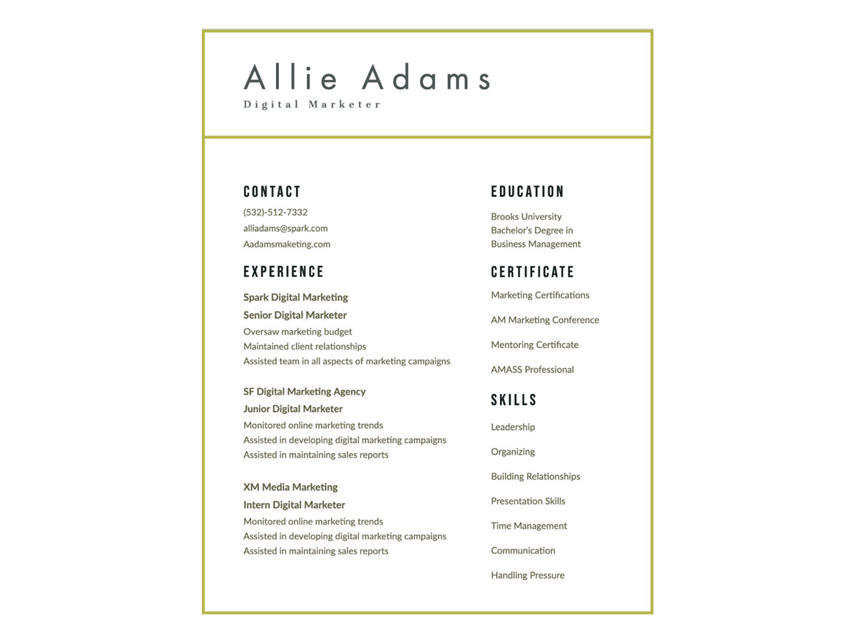 Marketing Visual Resume Template